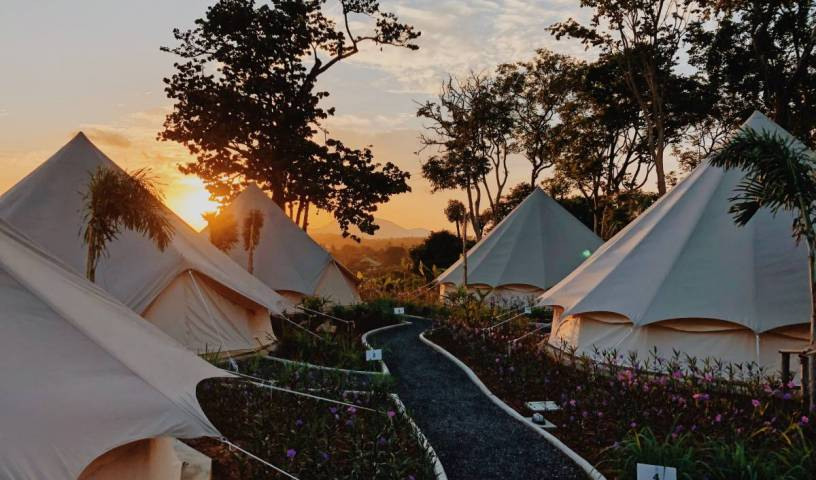 Roost Glamping - Get cheap hostel rates and check availability in Phuket 11 photos
