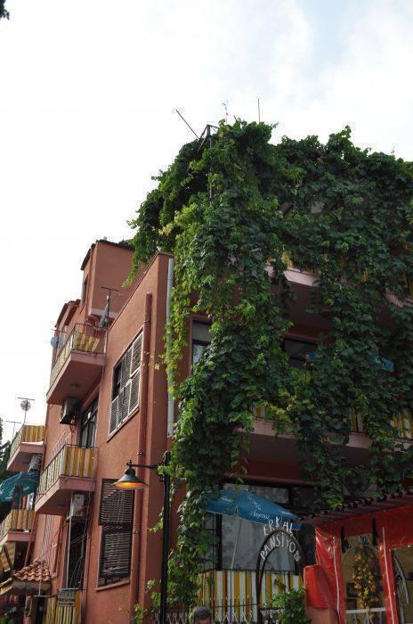 Erkal Pansion, Antalya, Turkey, safest places to visit and safe hostels in Antalya