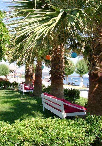 Yilmaz Hotel, Bodrum, Turkey, Visualizzare ed esplorare mappe delle città e dei bed & Posizioni per la colazione in Bodrum